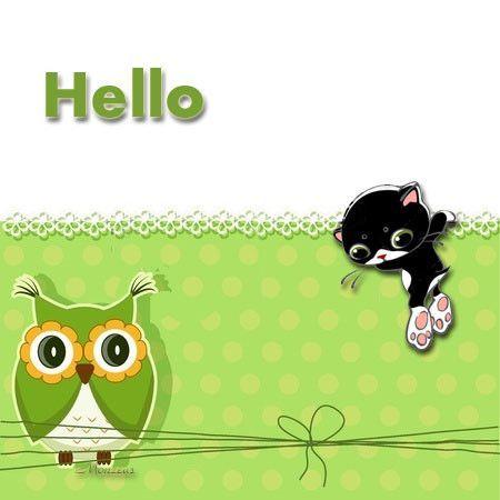 Hello-chat
